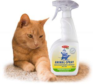 Reviermarkierungen von Katzen entfernen